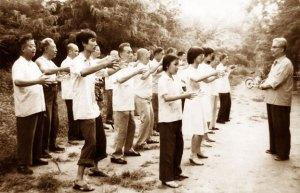 Zhan Zhuang, la posture de l'arbre