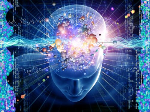 L'Intuition une capacité sous utilisée de notre cerveau ...
