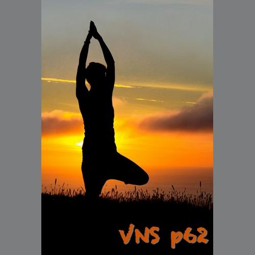 VNS p62 Posture de l'arbre