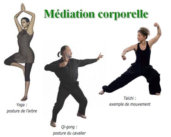 Médiation corporelle