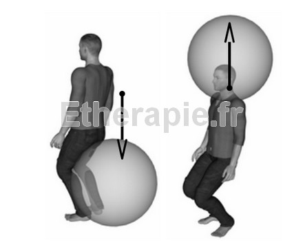 MNS : Mouvement Neuro-Sensoriel Haut-Bas (Qi-gong / Tai-chi)